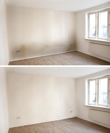 netzerwerk calw schimmelbeseitigung schimmel beseitigen nagold altensteig herrenberg. Black Bedroom Furniture Sets. Home Design Ideas